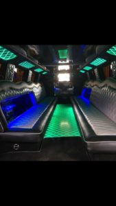 LIMOUSINE UPHOLSTERY